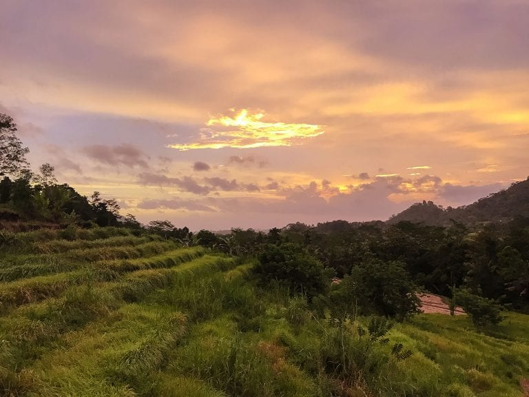 10 things to do in the North of Bali | The Silver Nomad