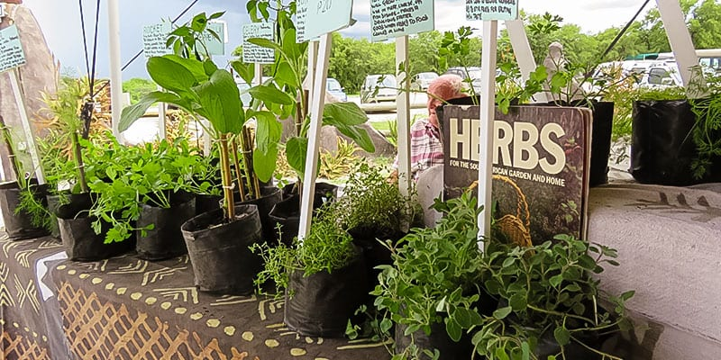 Angies Herb Stall
