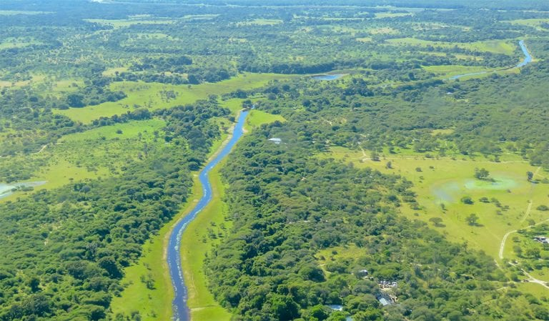 Safari Botswana FAQ
