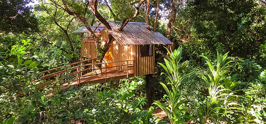 Wooden Treehouse in the jungle of Guanaja