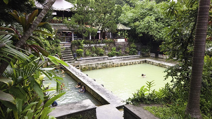 The two main sulphur pools at Air Panas Banjar, surrounded by lush ferns and palms