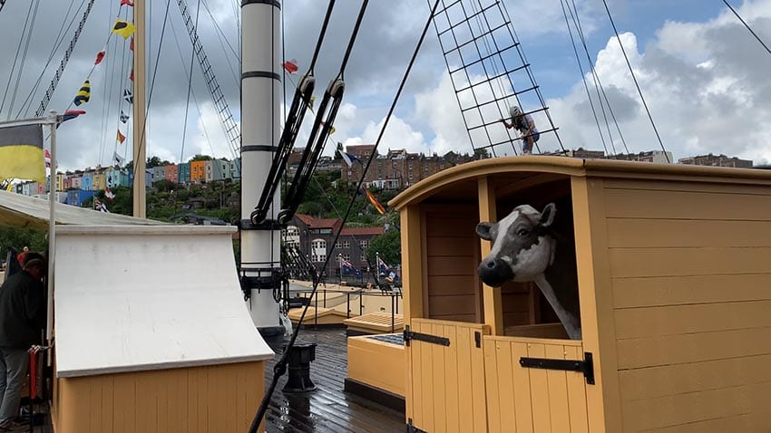 The yellow cowshed on the SS Great Britain with a black and white cow peering out. In the background someone is climbing the rigging and you can see blue sky behind the clouds.