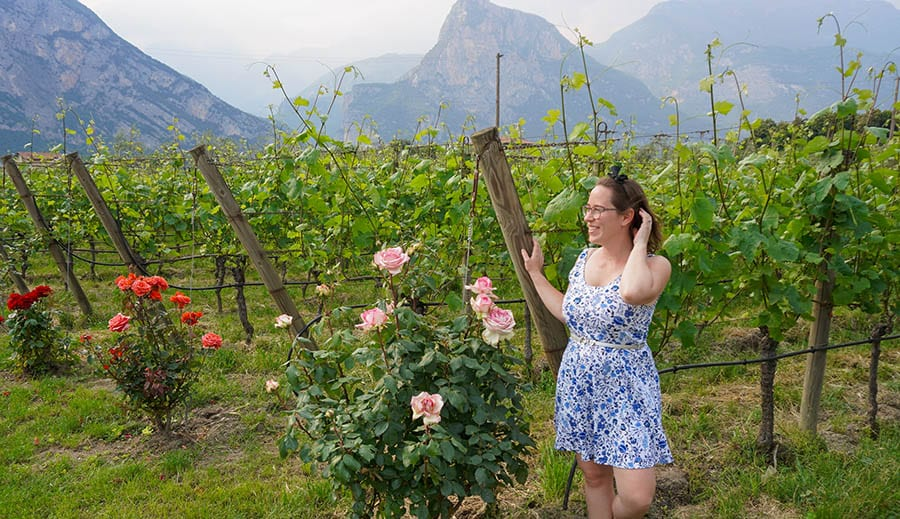 brown haired girl in a short blue and white dress standing next to a pink and two red rosebushes and grapevines with mountains in the background