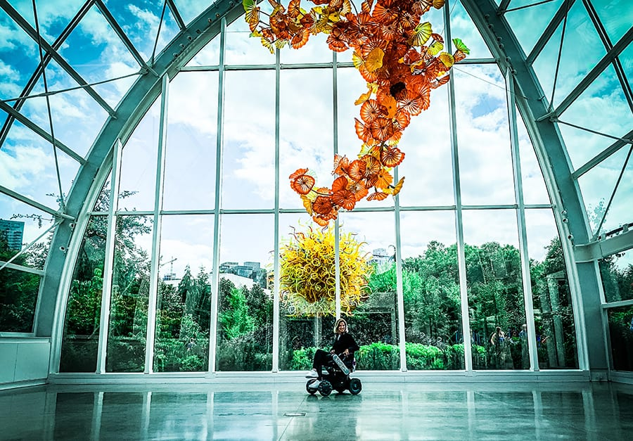 lady in a wheelchair inside a tall glass building with a orange flowers in the foreground and a yellow tree behind her