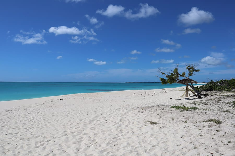 Princess Diana beach on the Caribbean Island of Barbuda