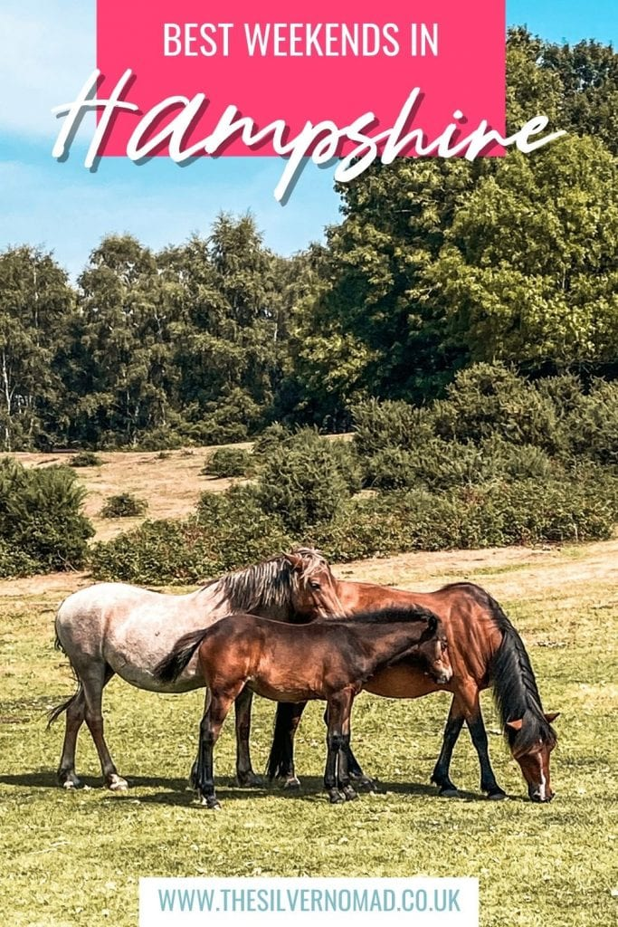 image of horses in a field with Best Weekends in Hampshire superimposed