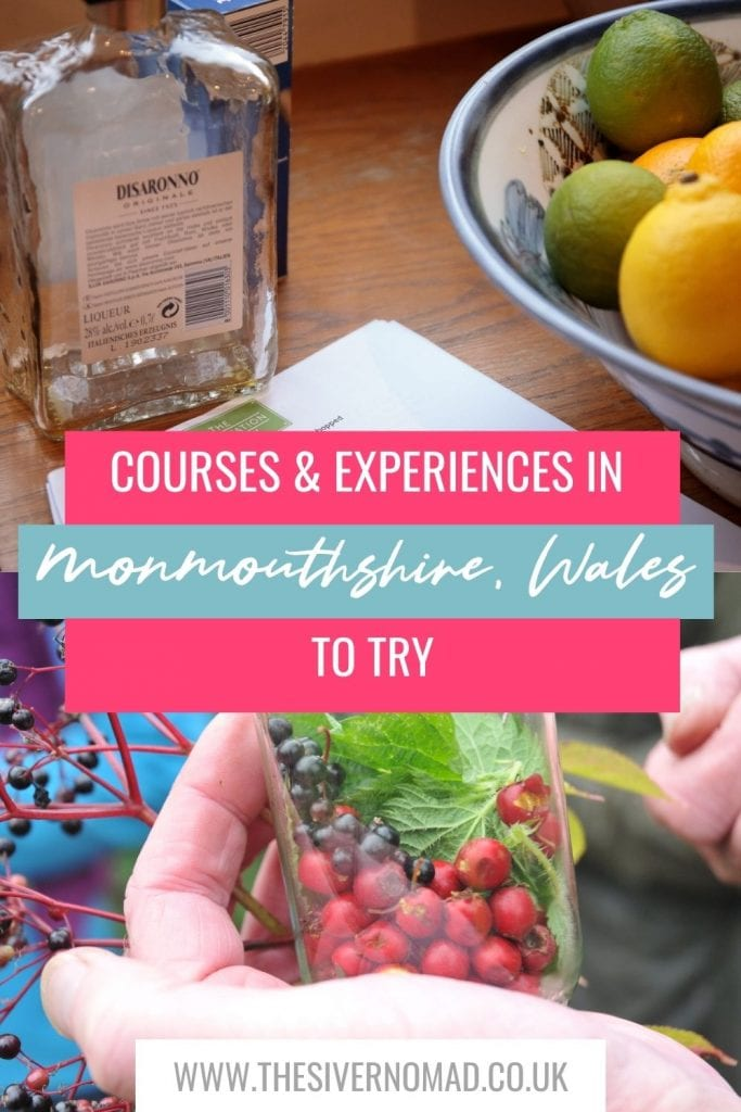 Image of Disaronno next to a bowl of lemons and limes above a photo of a bottle with berries and leaves in it with text below saying Guide to Courses & experiences in Monmouthshire