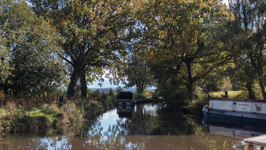 canal with boats ad overhanging trees