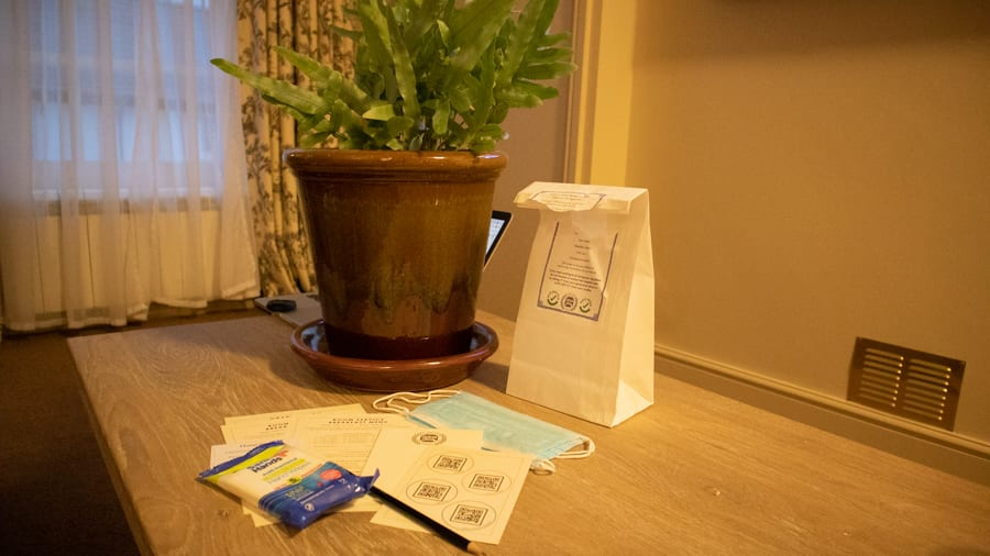 Complimentary Guestroom Amenity Kit including wipes, masks, next to a fern plant in a brown pot