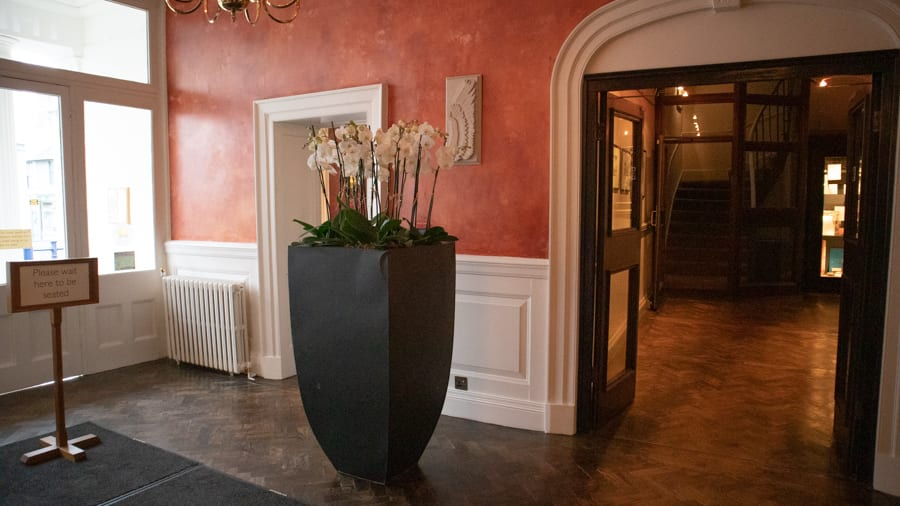 tall black vase with white orchids through open doors you can see stairs in the background