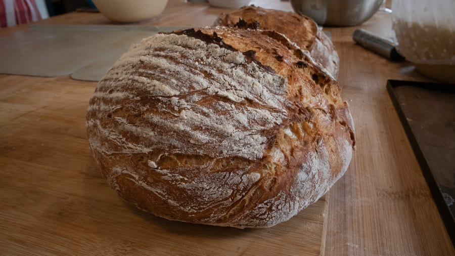 round loaf of bread with crisp edges and powdered with flour