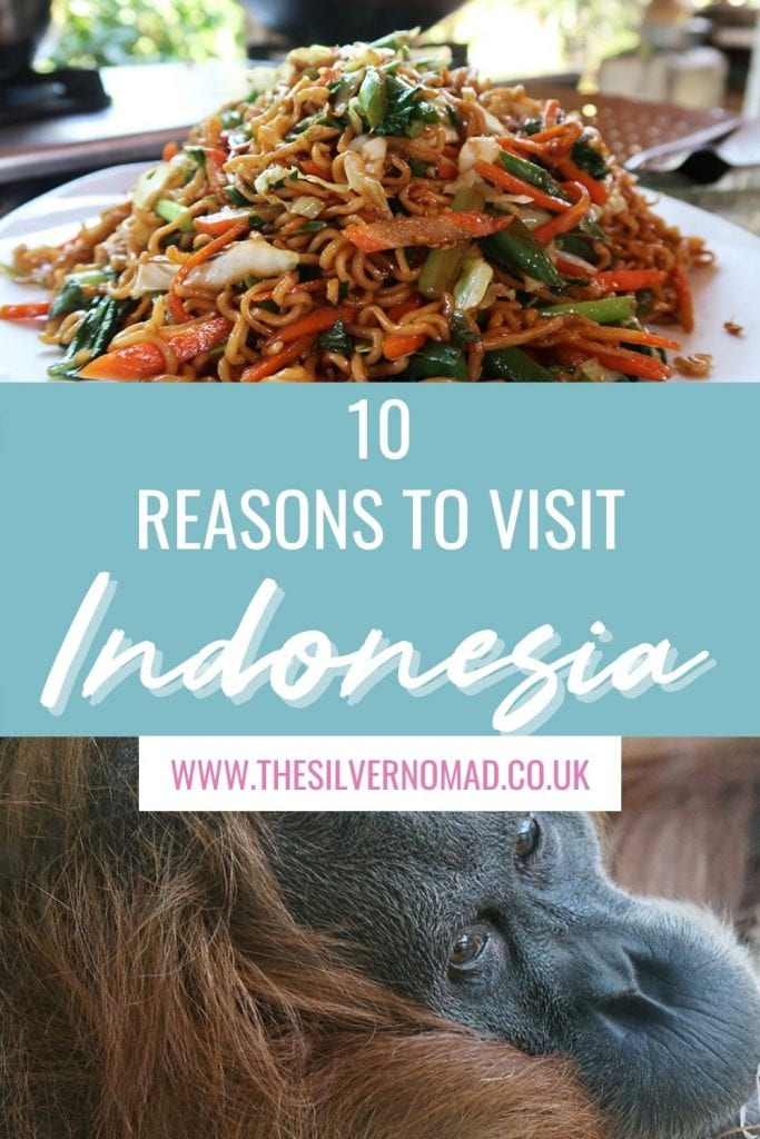 split image of a plate of noodles with carrots, cabbage and spring onions and an image of an orang-utan on bottom with the words 10 reasons to visit Indonesia superimposed