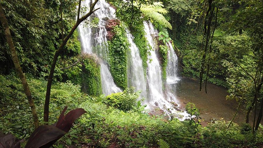waterfalls seen through trees