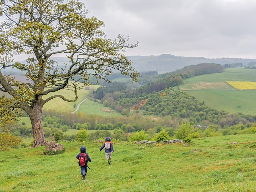 two small children walking down a hill with a tree to their left and trees and fields in the distance